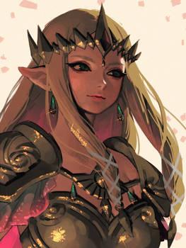 HW Princess Zelda(2)