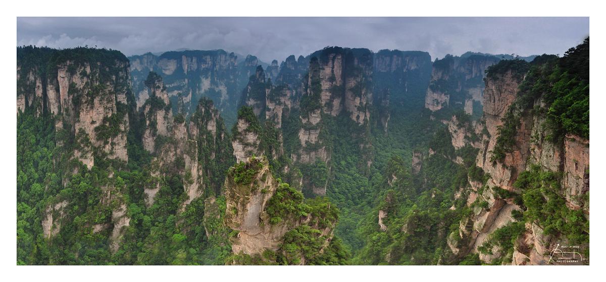 Vertigo - Forest of Stone by fr1gidity