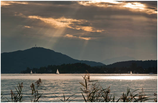 sunray boats