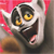 Happy Julien icon