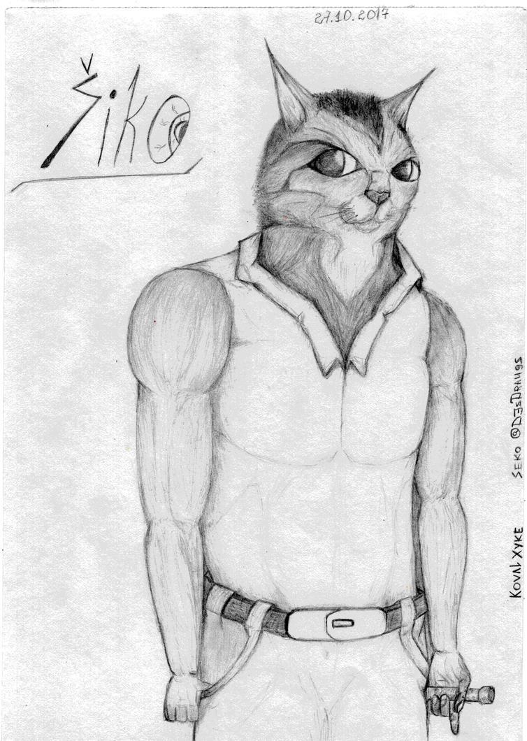 Shiko, the singer. by DennisDrake796