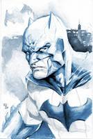Batman by RansomGetty