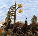 Styracosaurus 9