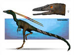Compsognathus by FreakyRaptor