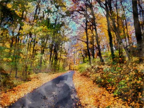 WTC Autumn Road