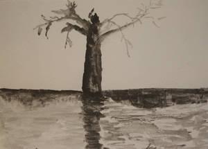 tree sketch, practice...