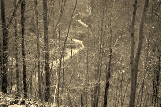 Elk Creek Eastern Ky.