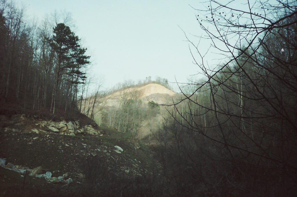 mountain top removal Hard-hitting documentary on the effects of the radical and environmentally disastrous form of coal mining known as mountaintop removal imdb.