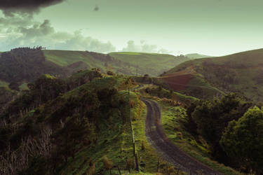 Path to the Shire by LeeAnnGlenn