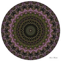 Heath Flowers Mandala