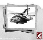 File Photo - HT-7 OWL