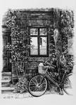 Bike (#39)