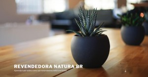 revendedoranatura's Profile Picture