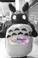 Totoro Cosplay, MCM Expo October 2013 by Pixie-Aztechia