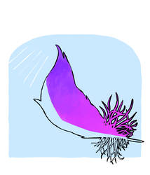 Feather for Kayla