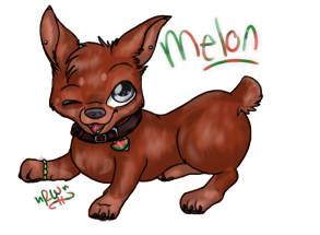 Melon :3 by rainwolfeh