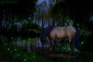 Come Walk Through The Swamp With Me... by CrystalSong-Acres