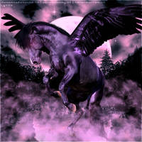 Magical Black Pegasus by CrystalSong-Acres