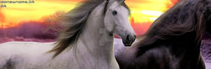 Banner - Sagebrush by CrystalSong-Acres