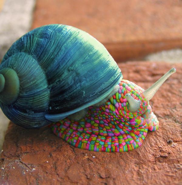 Psychedelic Snail by deaddonkeysrule