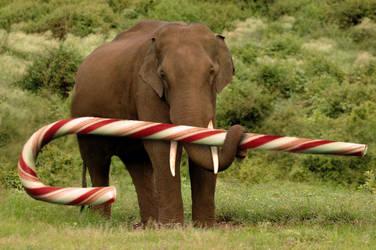 Elephant Sized CandyCane by deaddonkeysrule