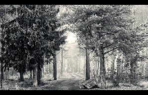 Dream Path by Jscenery