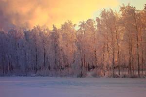 Winter Wonderland by Jscenery