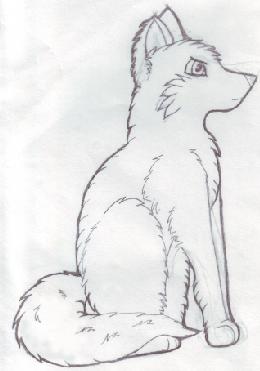Pencil Drawn Wolf by GlacierCat on DeviantArt