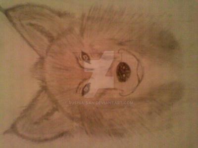 Wolf by Rushia-san