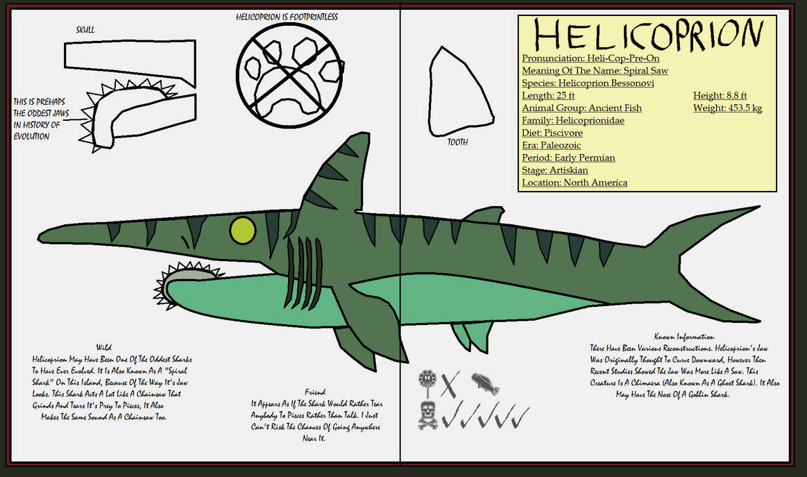 Dinatheen P-Animal Info Ref: Helicoprion by Tyrannosaurus90s
