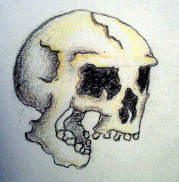 laughing skull by accomplicefarrell on deviantart. Black Bedroom Furniture Sets. Home Design Ideas