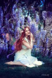 wisteria fairy