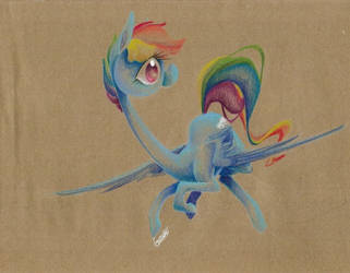 Rainbow Dash Thing by getchanoodlewet