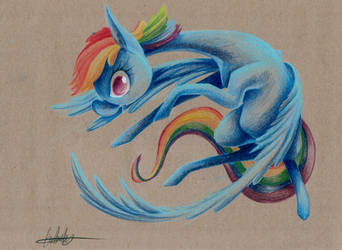 Rainbow by getchanoodlewet