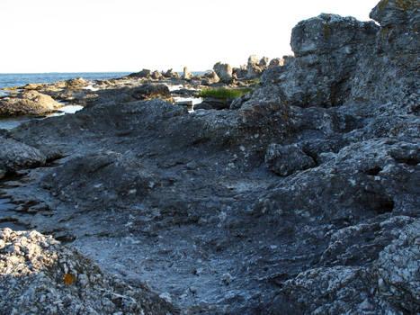 Gotland coast 4