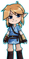 link  by Breath of the Wild