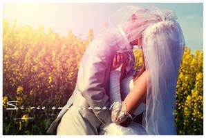 Wedding 5 by Fozekosh
