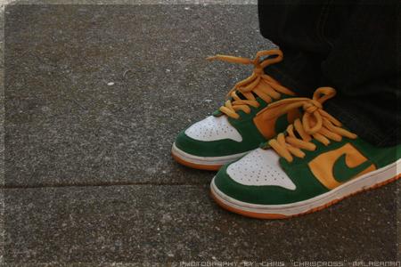 Nike Dunk SB 'Buck' by chriscr0ss ...