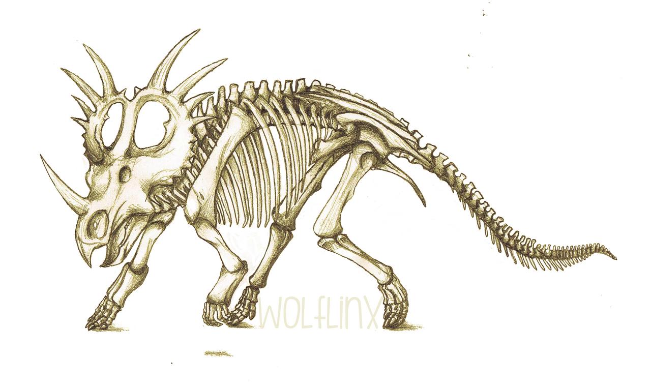 Galería de Wolflinx