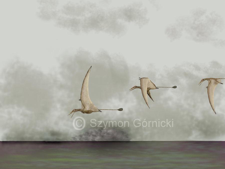 Ramphorynchus by Szymoonio