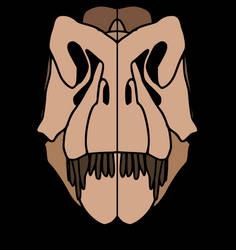 Tyrannosaurus skull design
