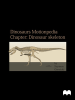 Dinosaurs Motionpedia - Dinosaur skeleton by Szymoonio