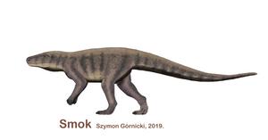 Smok (archosaur)