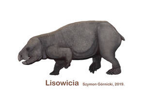 Lisowicia