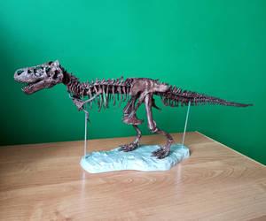 1:20 scale Tyrannosaurus skeleton model 2