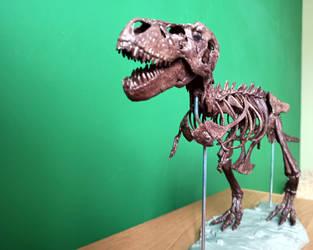 1:20 scale Tyrannosaurus skeleton model 3