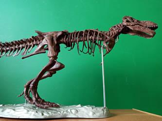 1:20 scale Tyrannosaurus skeleton model 5
