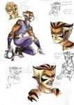 Thundercats 2011 - Tygra Sketches