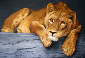 Beautiful Female Lion by Art-Lep
