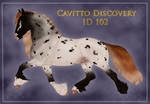 Cavitto Discovery ID 102